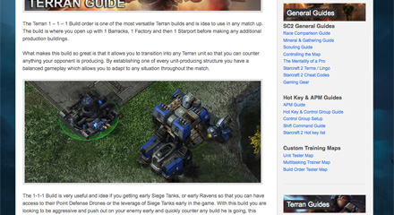 StarCraft 2 Terran Guides